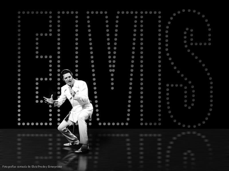 elvis presley fonds crans gifs stars